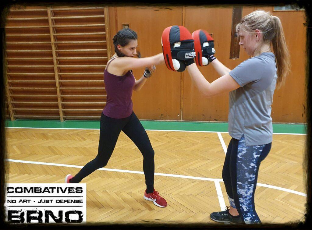 přerušení tréninků combatives brno